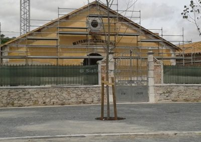 Museu de Moura